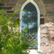 Old church window — Stock Photo #26393433