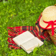 Picnic basket, books and straw hat lying on the grass. — Stock Photo