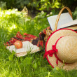 Picnic basket, books and straw hat lying on the grass. — Stock Photo #27459923