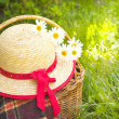 Picnic basket, and straw hat lying on the grass. — Stock Photo