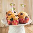 Stock Photo: Homemade Blueberry Muffins