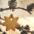 Foto Stock: Gingerbread cookie hanging on branch with pine cones
