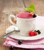Berry fruit ice cream — Stock Photo