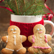 Gingerbread couple — Photo