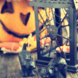 Stockfoto: Halloween decoration