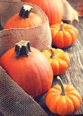 Fresh Pumpkins on wooden background — Stockfoto
