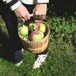 Female hands holding basket full of apples.  — Stockfoto