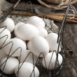 Stock Photo: Eggs in Basket, toned
