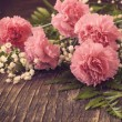 Pink Carnation on wooden background. Toned image — Stock Photo