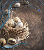 Easter decoration with quail eggs and branches on wooden board. — 图库照片