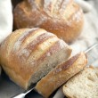 Freshly baked traditional bread — Stock Photo #41892699