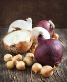 Different varieties of onions on a wooden background — Stock Photo