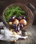 Fresh Vegetables in the basket — Stock Photo