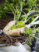 Fresh parsley root in basket — Stock Photo