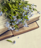 Vintage books and  summer blue flowers. Toned image. — Stok fotoğraf
