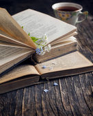 Vintage books and  summer blue flowers. Selective focus — Stock Photo