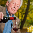 Senior man enjoying grapes and cheese outdoors in autumn forest. — Stock Photo