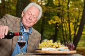 Senior homme jouissant de raisins et de fromage à l'extérieur dans la forêt d'automne. — Photo