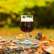 Glass of dark bock beer standing on tree trunk in autumn forest. — Stock Photo