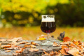 Verre de bière brune de bock. — Photo