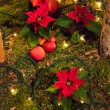 Christmas decoration. — Foto Stock