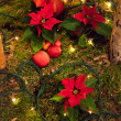 Christmas decoration. — Stockfoto #18054159