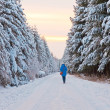 Tourist walking in winter landscape. - Stock Photo