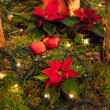Christmas decoration. — Stock fotografie