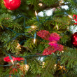 Red christmas decoration — Stockfoto