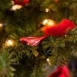 Red christmas decoration — Stock fotografie