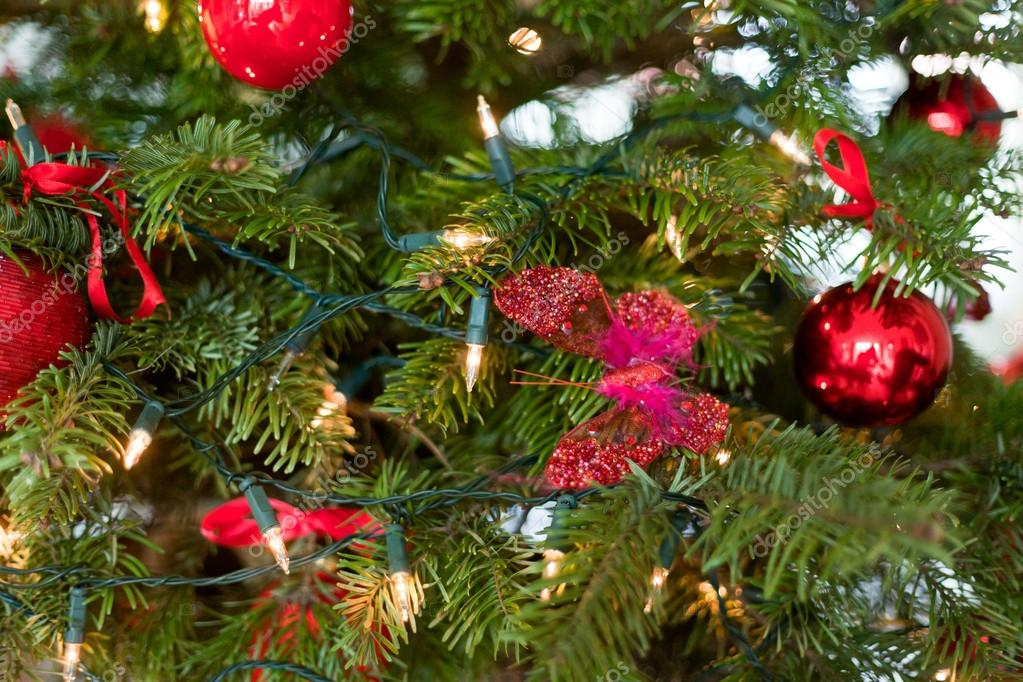 Red christmas decoration in tree. — Foto de Stock   #18155273