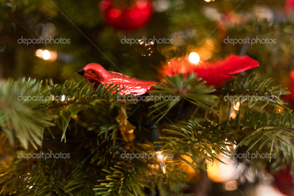 Red christmas decoration in tree.  Stock Photo #18155303