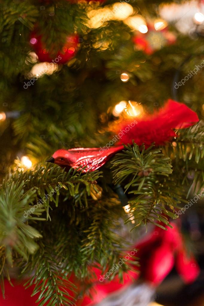 Red christmas decoration in tree. — Stock Photo #18155305