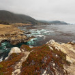 Coast of Big Sur with rocks and vegetation. California. USA. — Stock Photo #23584693