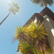 Stock Photo: Old house with palm trees and blue sky. USA. California. San Sim