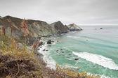 Costa di big sur con cielo nuvoloso. negli stati uniti. california. — Foto Stock