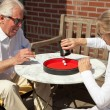 Senior couple playing dice game outdoor in garden. Yahtzee. — Stock Photo #25761459