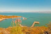 Yacht harbor at Golden Gate Bridge 1. Top view. San Francisco. U — Stock Photo