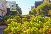 Lombard street with flowers in San Francisco. — Stock Photo