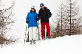 счастливый лыж пара стоя на снежные горы. — Стоковое фото