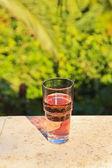 杯鲜粉红色汽水与模糊绿色花园广管局的阳台上 — 图库照片