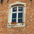 Exterior white window of old building decorated with red flowers — Stock Photo