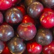 A bunch of fresh plums. — Stock Photo #33232353