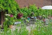 Flores en jardín con verde follaje y ladrillo de la pared de una casa. — Foto de Stock