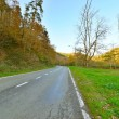 Road in autumn mountain landscape. Vresse sur Semois. Ardennes. — Stock Photo #35744113