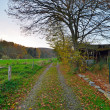 Road in rural autumn landscape. Old wooden shed. — Stock Photo