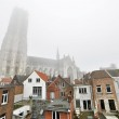 ������, ������: Sint Rombout church in the mist with houses in front Mechelen