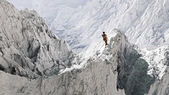 Aerial perspective of hiker standing on peak in snow mountain la — Stock Photo