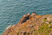 Tourists walking on rocks near ocean. Top view. — Stock Photo