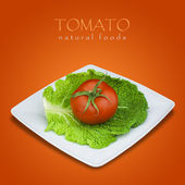 Tomato and savoy cabbage in plate on red background — Stock Photo